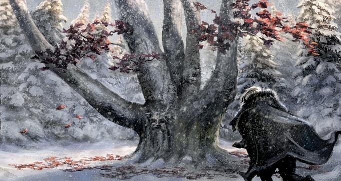 Snow Storm Fantasy